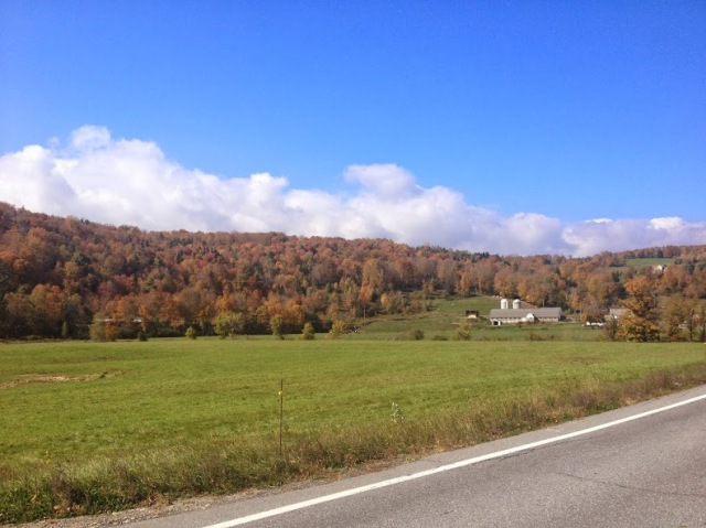 leaf peeping along vermont's route 100