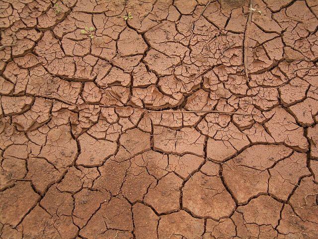 800px-Dried_mud_(La_Fajana)_03_ies